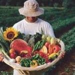 New Mexico Farmers Markets