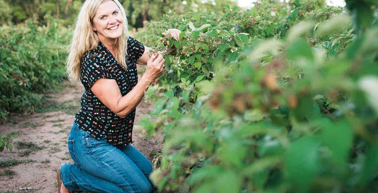 Best Food Artisan: Heidi's Raspberry Farm