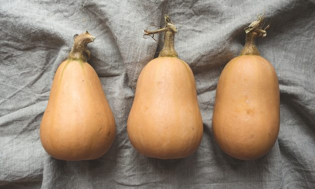 Warm up to Butternut Squash