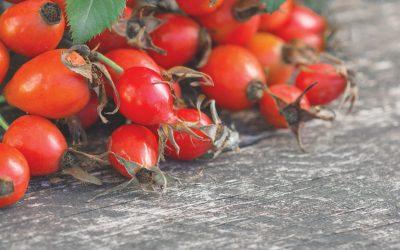 Rose Hip Cordial