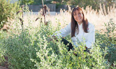 Lois Ellen Frank, PhD
