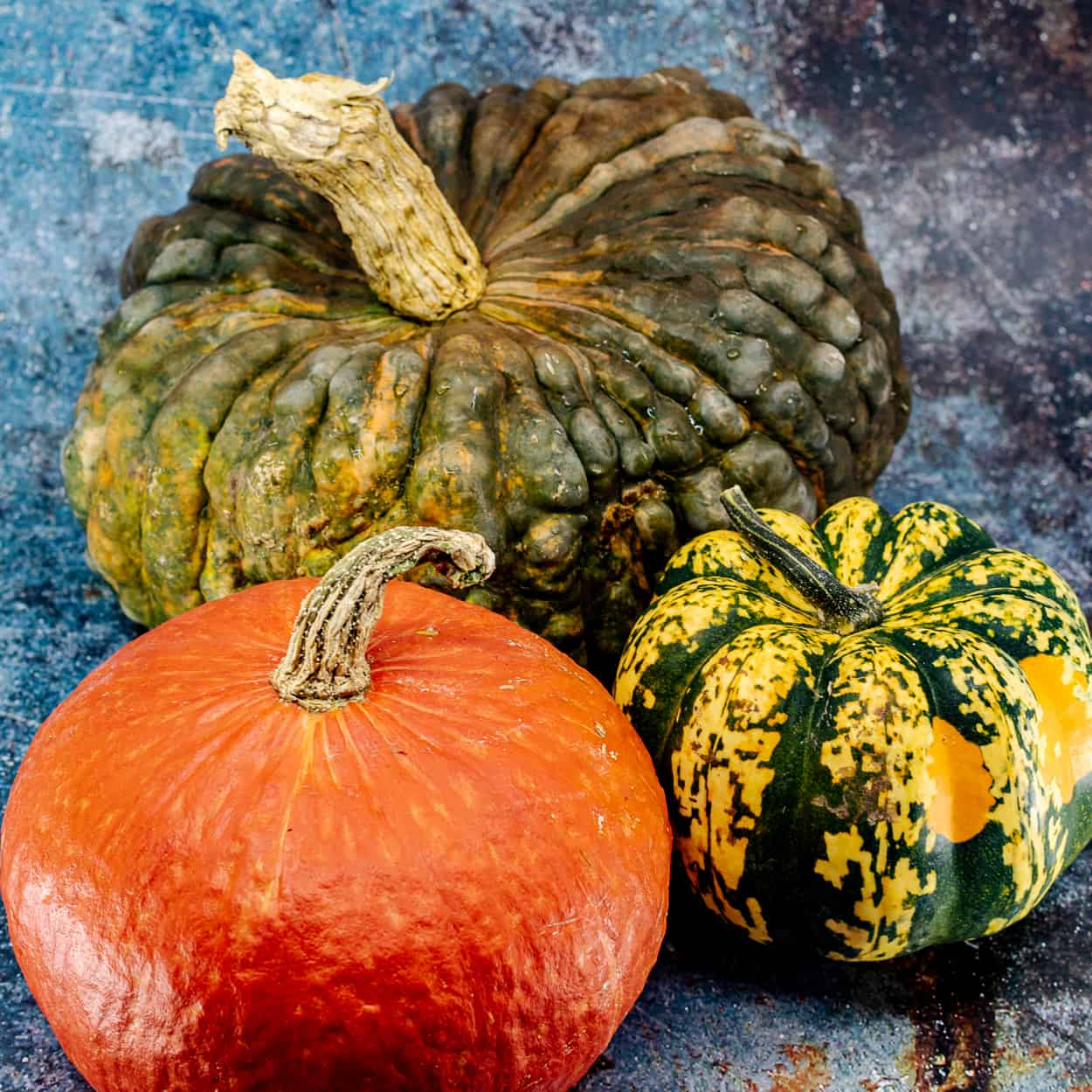 A Guide to Winter Squash - Edible New Mexico